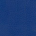 blue 6401